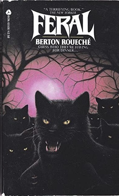 A group of slightly anthropomorphic black cats glare at the viewer in front of a dark forest.