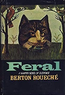 A giant surrealistic cat head sits in the middle of a forest in this illustration for the hardcover jacket version of the book.